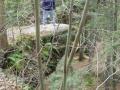 Hocking Hills 010